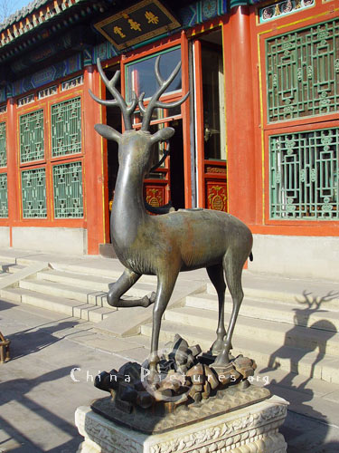 The deer is a symbol of longevity, because it is said to be the only animal which can find the Lingzhi fungus of immortality.(Hall of Joyful Longevity, Summer Palace,Beijing)