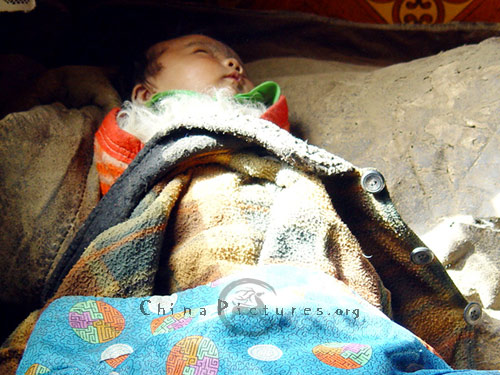 Nap time for tiny villager, Qinghai