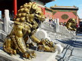 Golden lioness, Forbidden City, Beijing
