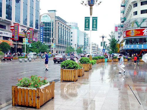 The city streets are made attractive by the careful planting of trees and shrubs together with an abundance of floral displays.