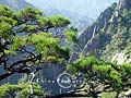Xihai Gorge is a scenic spot of Mt.Huangshan, greeting the eye every step of the way with numerous sights.