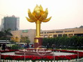 Lotus, the symbol of Macau