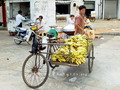 Tricycle, Haikou