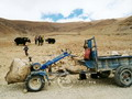 Old tractor still working in Tibet
