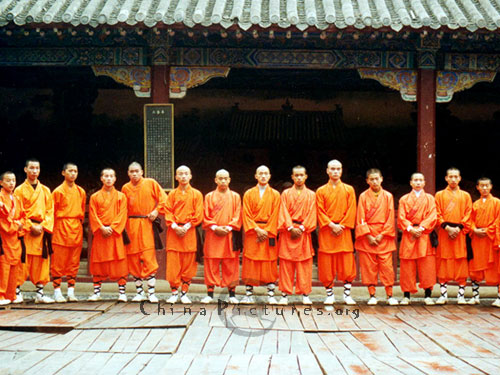They are the young lions! A line up of monks from Shaolin Temple.