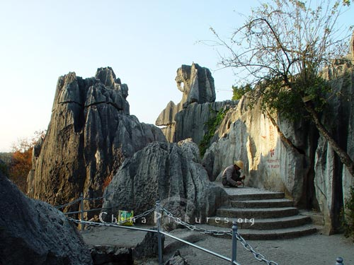 Stone elephant, Yunnan Stone Forest.