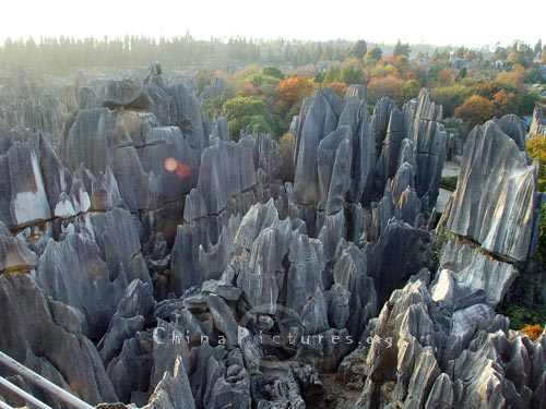 The rocks were formed over the years on the seafloor in Yunnan Stone Forest.